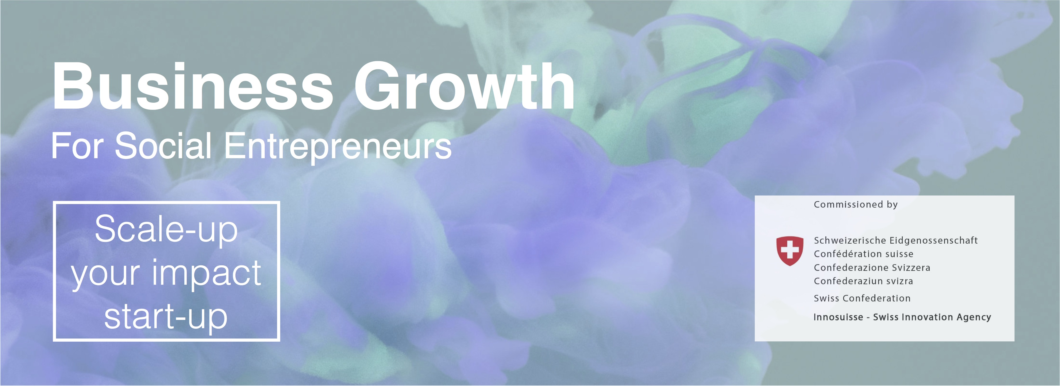 Innosuisse Startup Training - Business Growth