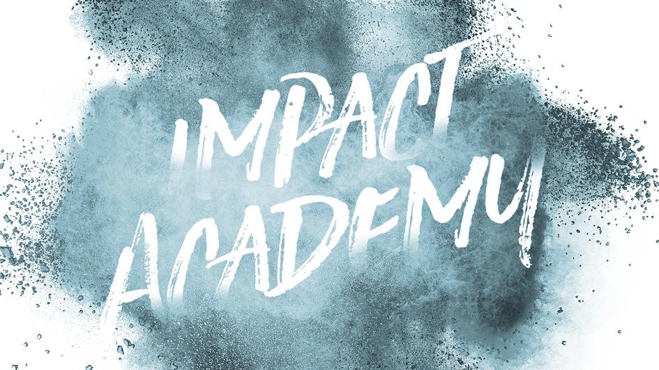SEIF Impact Academy Coaching Program