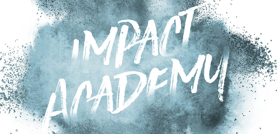 SEIF Impact Academy